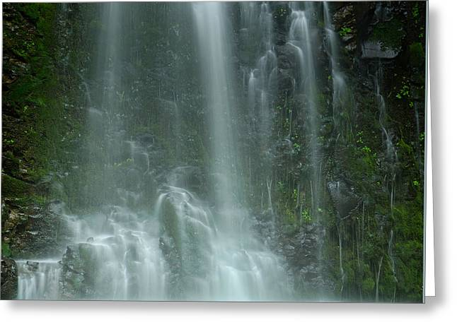 Mountain Valley Greeting Cards - Double Falls Greeting Card by Don Schwartz