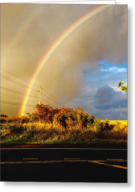 Patch Greeting Cards - Double Pot of Gold Greeting Card by Steven Lapkin