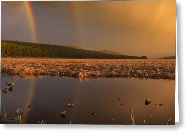 Double Rainbow Light Greeting Card by Leland D Howard