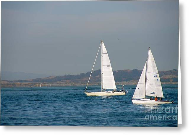 Two Sail Boats Greeting Cards - Double Sails Greeting Card by Nathania Ray