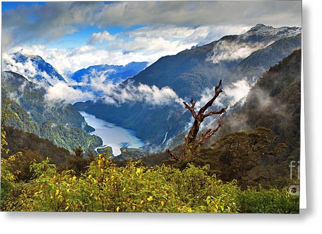 Snow Capped Greeting Cards - Doubtful Sound Greeting Card by Bill  Robinson