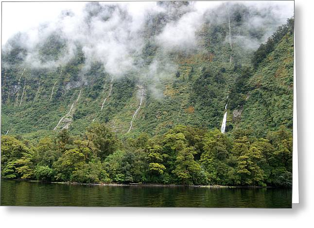Doubtful Greeting Cards - Doubtful sound Greeting Card by Jessica Rose