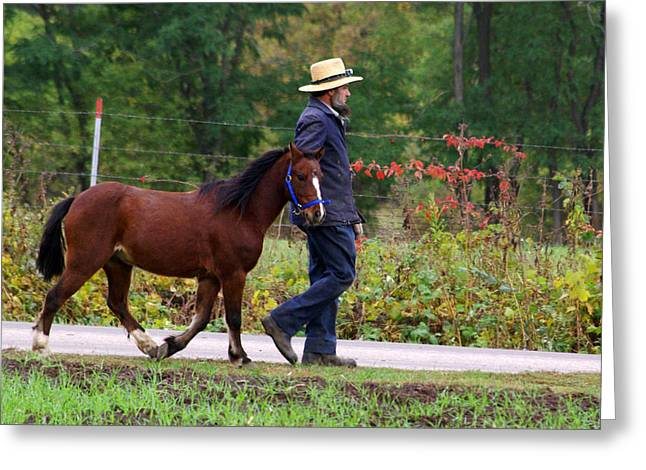 Down a Country Road Greeting Card by Linda Mishler