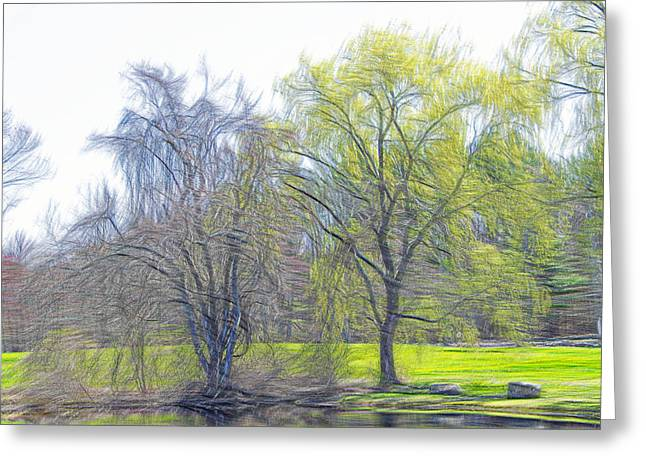 Willow Lake Greeting Cards - Down By The Pond Greeting Card by Douglas Miller
