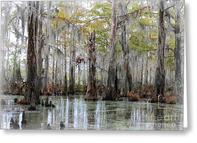 Down On The Bayou - Digital Painting Greeting Card by Carol Groenen