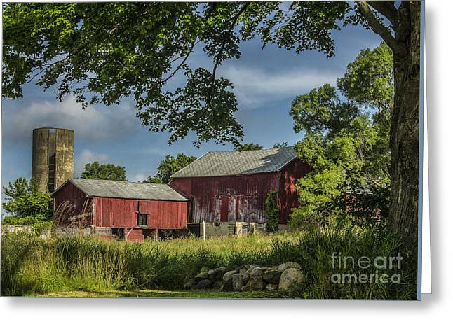 Farmers Field Greeting Cards - Down On The Farm Greeting Card by JRP Photography