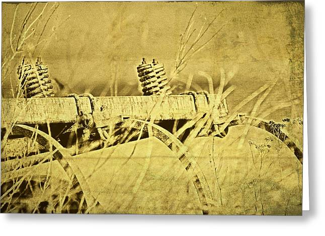 Down On The Farm Greeting Card by Tom Mc Nemar