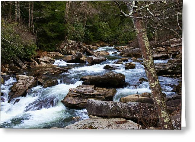 Down Stream From Glade Creek Grist Mill Greeting Card by Chris Flees