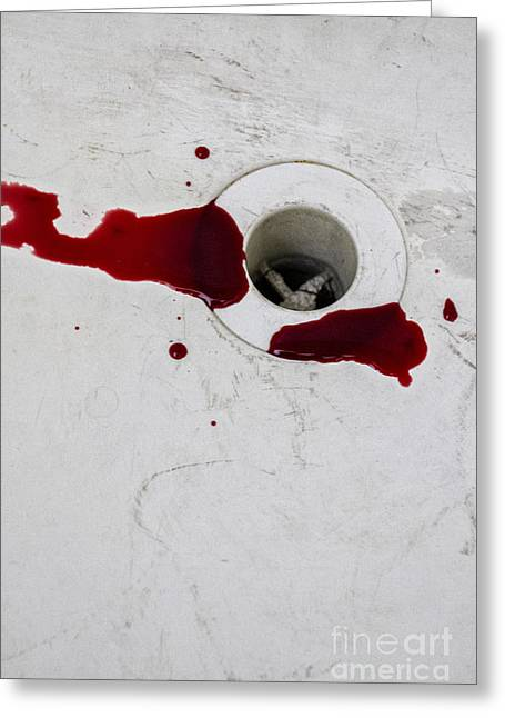 Down The Drain Greeting Card by Margie Hurwich