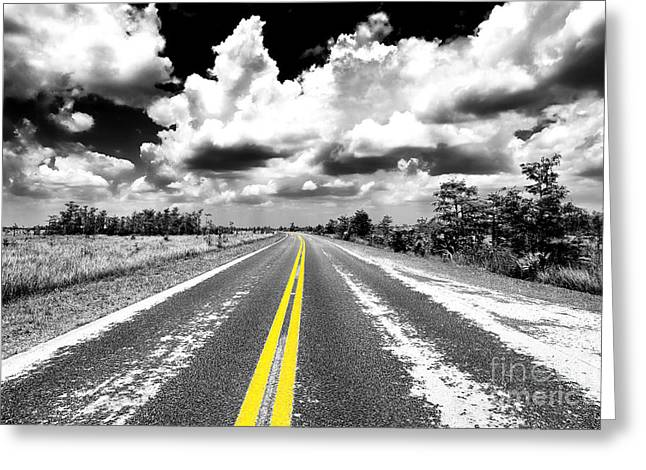 Yellow Line Greeting Cards - Down the Everglades Fusion Greeting Card by John Rizzuto