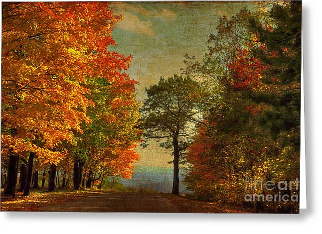 Down the Mountain Greeting Card by Lois Bryan