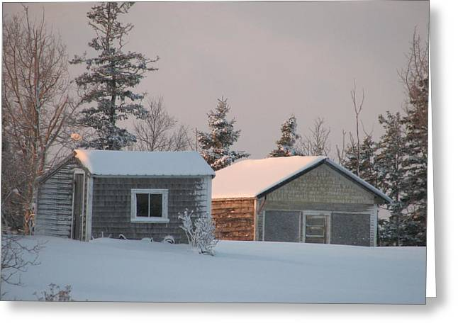 Winter In Maine Greeting Cards - Downeast Maine 3 Greeting Card by Cat Encio