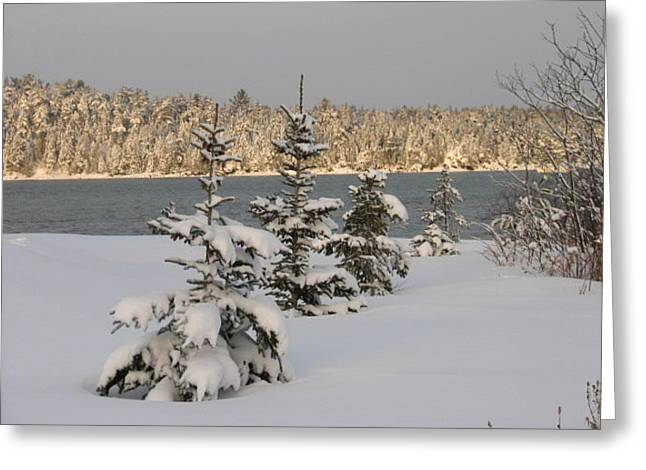 Winter In Maine Greeting Cards - Downeast Maine 5 Greeting Card by Cat Encio
