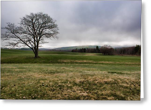 Maine Farms Greeting Cards - DownEast Pasture Greeting Card by Bob Orsillo