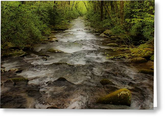 Tennessee River Greeting Cards - Downstream Greeting Card by Sandy Keeton