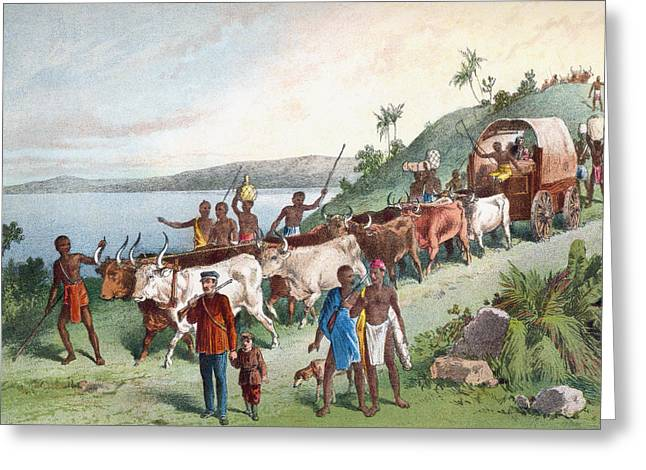 Livingstone Greeting Cards - Dr. David Livingstone S Arrival At Lake Greeting Card by Vintage Design Pics