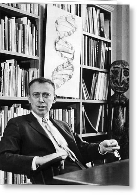 Dr. James Watson And Dna Helix Greeting Card by Underwood Archives