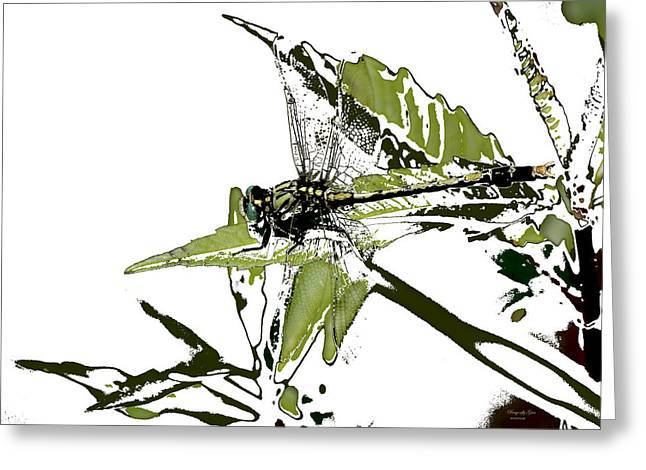 Duke Island Park Greeting Cards - Dragonfly Grin - Art Greeting Card by Warren M Gray