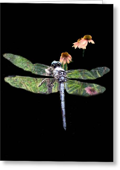 Dragonflies Greeting Cards - Dragonfly Greeting Card by Julian Bralley