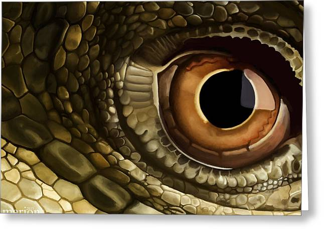 Dragon's Eye View Greeting Card by Marion Sipe