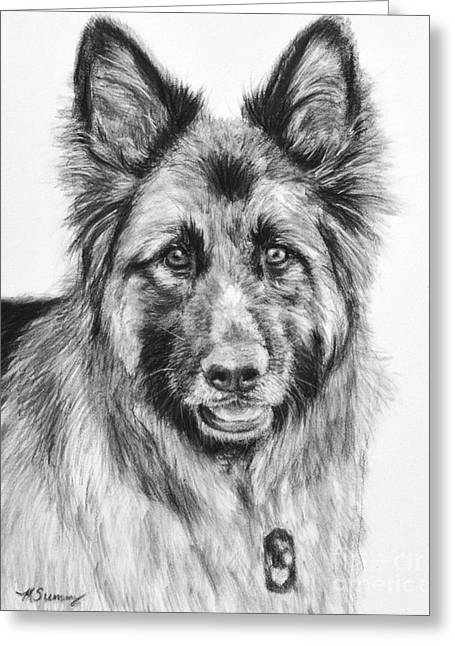 Working Dog Greeting Cards - Drawing of a Long-Haired German Shepherd Greeting Card by Kate Sumners