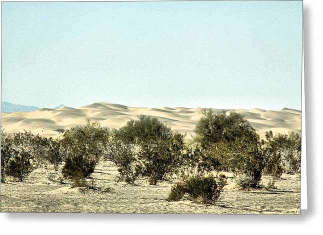 Sand Dunes Pyrography Greeting Cards - Dream Dunes 0185 Greeting Card by Sharon Broucek