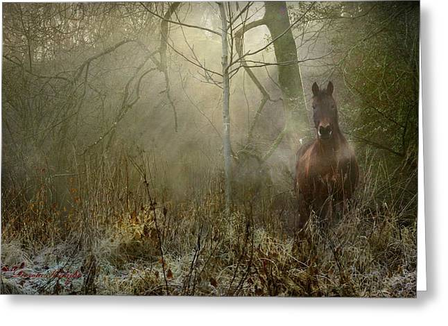 Magic Photographs Greeting Cards - Dream Forest Greeting Card by Dorota Kudyba