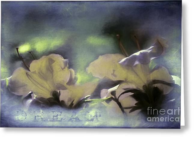 Inspiration Greeting Cards - Dream Greeting Card by Jean OKeeffe Macro Abundance Art