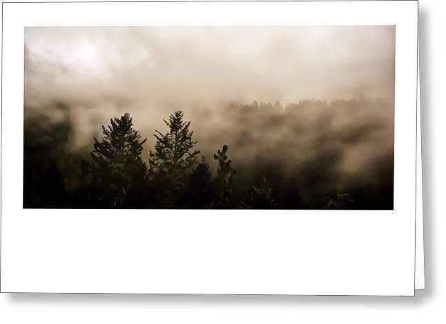 Marin County Greeting Cards - Dream Like State Greeting Card by Dan Shehan