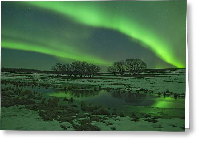 Edmonton Photographer Greeting Cards - Dream Greeting Card by Mike Isaak