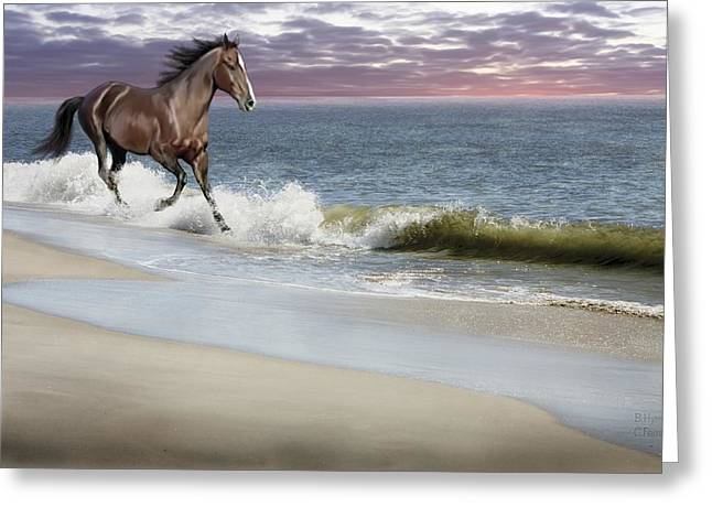 Equine Mixed Media Greeting Cards - Dreamer On The Beach Greeting Card by Barbara Hymer