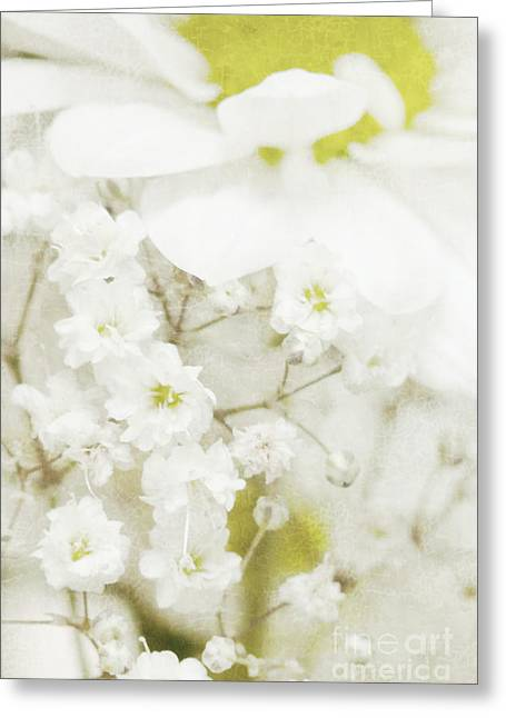 Zarte Greeting Cards - Dreaming flowers Greeting Card by Angela Doelling AD DESIGN Photo and PhotoArt