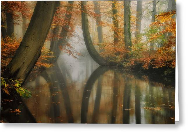 Dreaming Greeting Card by Martin Podt