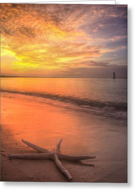 Florida Panhandle Sunset Greeting Cards - Dreaming of Pensacola Beach Greeting Card by JC Findley