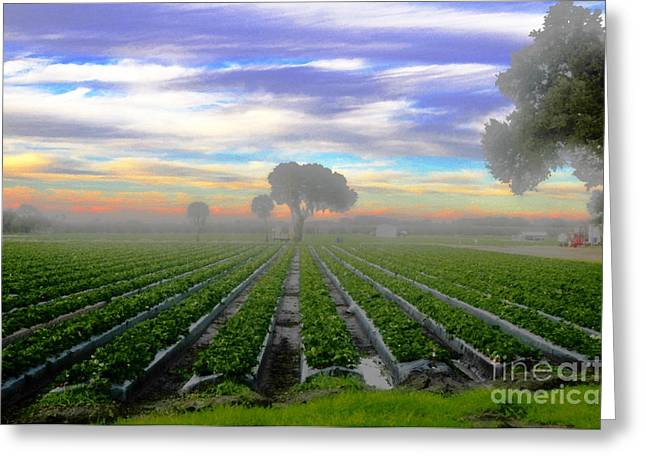 Strawberry Art Greeting Cards - Dreaming of Strawberries Greeting Card by David Lee Thompson