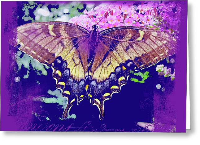 Dreams Come On Wings Greeting Card by Mother Nature