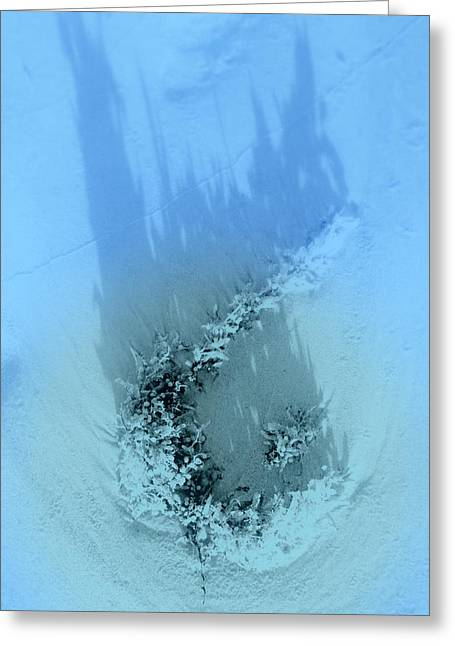 Dreams Of The Sea 2 Greeting Card by Susanne Van Hulst