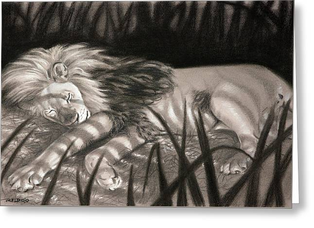 Dreams Of Zebras Greeting Card by Christopher Reid