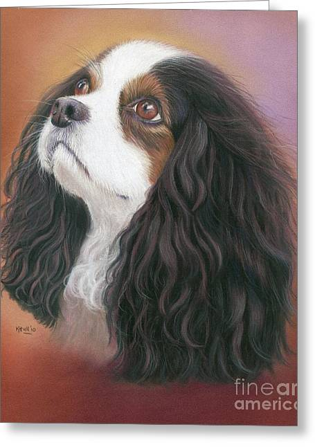Spaniel Drawings Greeting Cards - Dreamy Greeting Card by Karen Hull