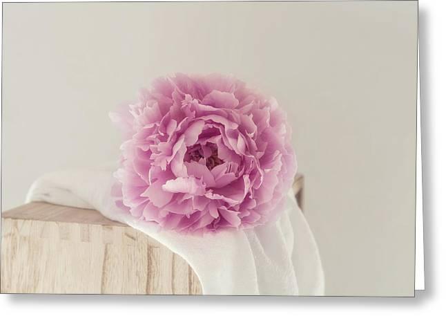 Dreamy Pink Peony Greeting Card by Kim Hojnacki