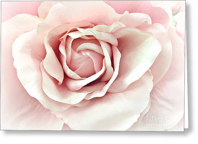 Dreamy Romantic Pastel Pink Shabby Chic Rose Closeup - Watercolor Roses  Greeting Card by Kathy Fornal