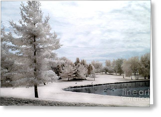 Dreamy Infrared Greeting Cards - Dreamy Surreal Infrared Pond Landscape Nature Scene  Greeting Card by Kathy Fornal