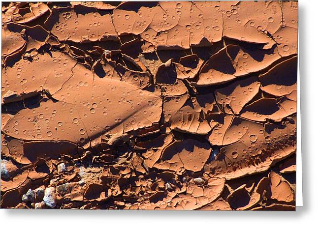 Dried Mud 5c Greeting Card by Mike McGlothlen