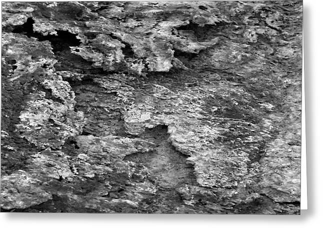 Nature Abstract Greeting Cards - Dried Mud 6 Greeting Card by Mike McGlothlen