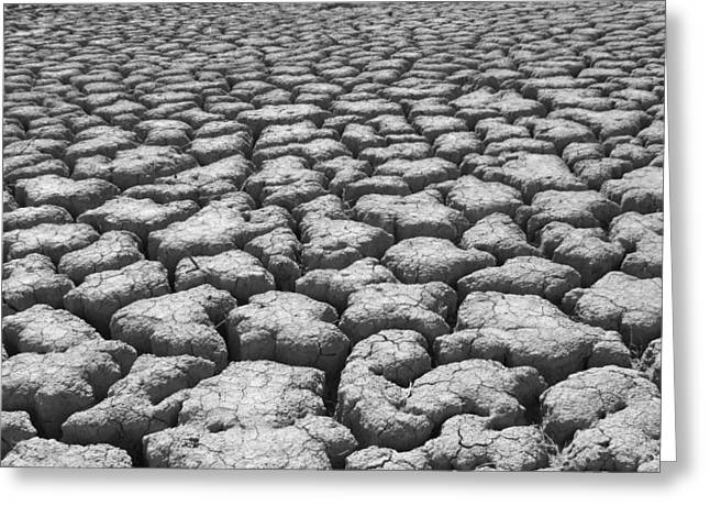 Nature Abstract Greeting Cards - Dried Mud 9 Greeting Card by Mike McGlothlen