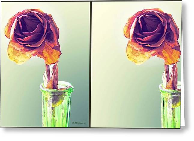 Flower Stems In Bottle Greeting Cards - Dried Rose - Gently cross your eyes and focus on the middle image Greeting Card by Brian Wallace