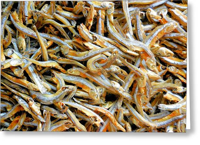 Dried Small Fish 1 Greeting Card by Lanjee Chee