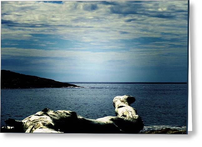 Maine Beach Greeting Cards - Driftwood Compass Greeting Card by Mike Breau