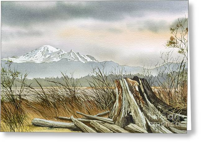 Landscape Framed Prints Greeting Cards - Driftwood Dawn Greeting Card by James Williamson