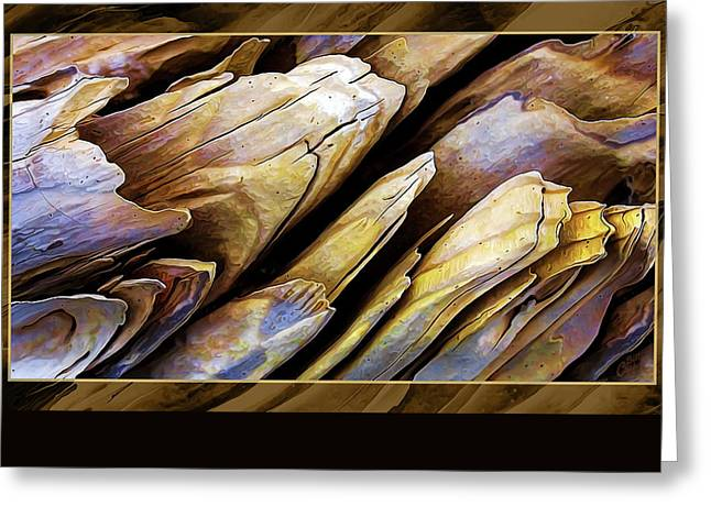 Fine Photography Digital Greeting Cards - Driftwood Edges Greeting Card by Bill Caldwell -        ABeautifulSky Photography